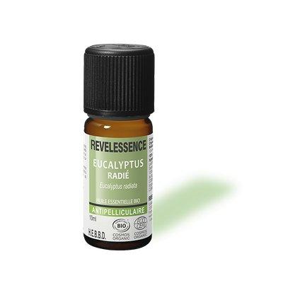 Huile Essentielle Eucalyptus Radiata - Revelessence - Massage et détente