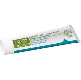 Dentargile Menthe - Dentifrice reminéralisant à l'argile - CATTIER - Hygiène