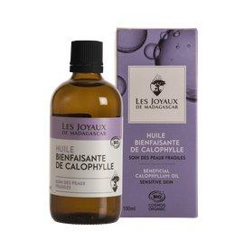 image produit Calophylle oil