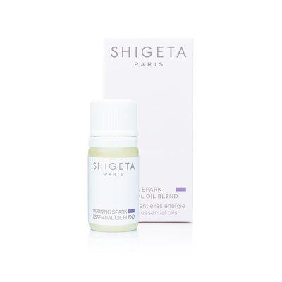 Huiles essentielles énergie - SHIGETA - Massage et détente