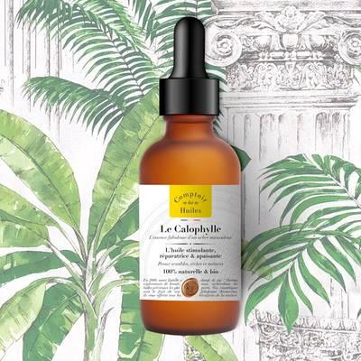 Le Calophylle - huile végétale - Comptoir des Huiles - Visage - Corps