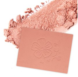 Blush - DYP Cosmethic - Makeup