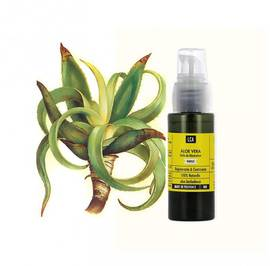 Huile d'Aloe vera - LCA - Massage and relaxation