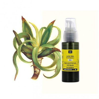 Huile d'Aloe vera - LCA - Massage et détente