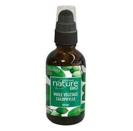 Huile végétale calophylle - Boutique Nature - Massage et détente