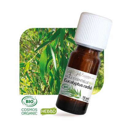 Huile essentielle Eucalyptus radié Bio - Joli'Essence - Ingrédients diy