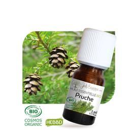 huile-essentielle-pruche-bio