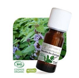 Huile essentielle Menthe des champs Bio - Joli'Essence - Diy ingredients