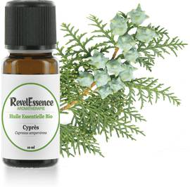 Huile Essentielle Bio Cyprès - Revelessence - Massage and relaxation