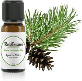 Huile Essentielle Bio Epinette - Revelessence - Massage and relaxation