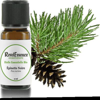 Huile Essentielle Bio Epinette - Revelessence - Massage et détente
