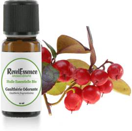 Huile Essentielle Bio Gaulthérie Odorante - Revelessence - Massage and relaxation