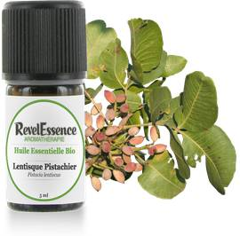 Huile Essentielle Bio Lentisque Pistachier - Revelessence - Massage and relaxation
