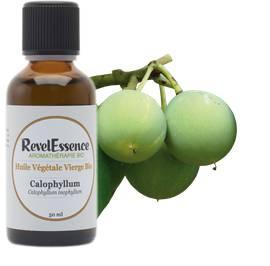Huile Végétale Calophyllum - Revelessence - Massage et détente