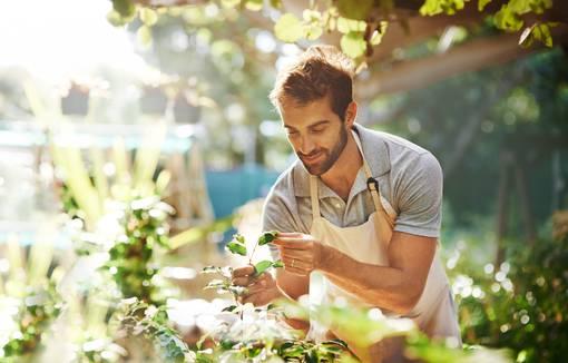 photo-homme-qui-jardine