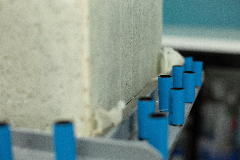 Processus de saponification froid chez Atelier Populaire.
