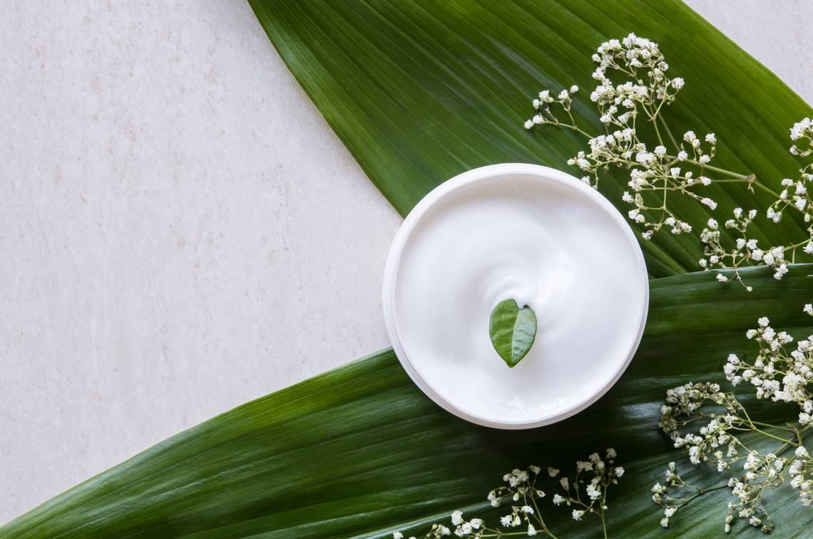 feuilles vertes pour montrer le côté naturel d'une crème hydratante pour peau mixte